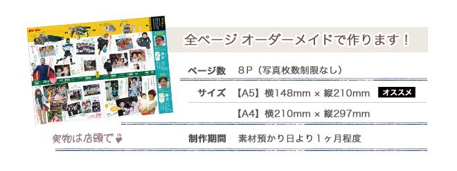 プロフィールパンフレットのサイズ